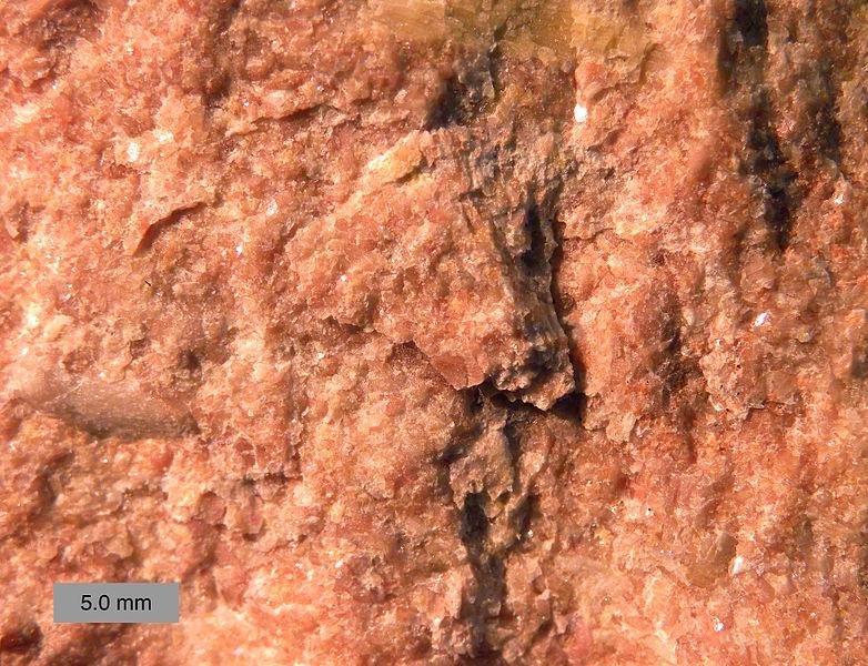 Calcaire du Silurien inférieur