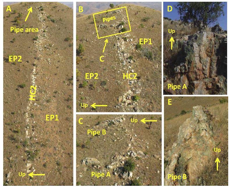 Complexe de Hoogenoeg en Afrique du Sud.