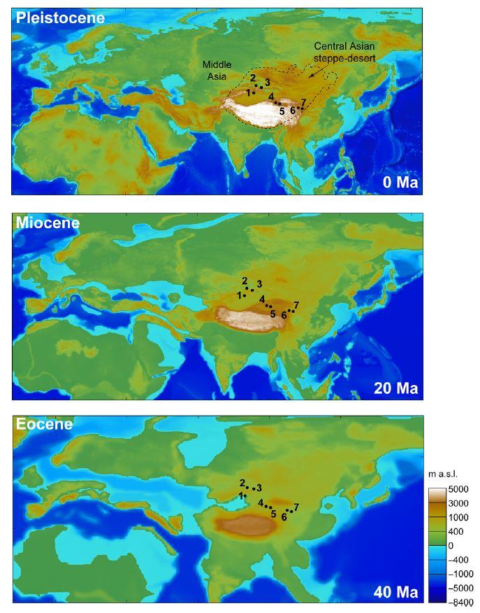 Eurasie paléogéographie