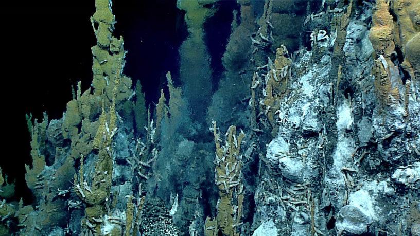Cheminée hydrothermale
