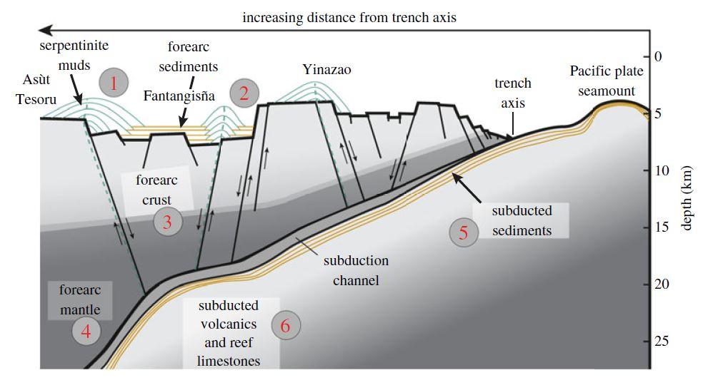 Coupe de la zone d'avant-arc des Mariannes